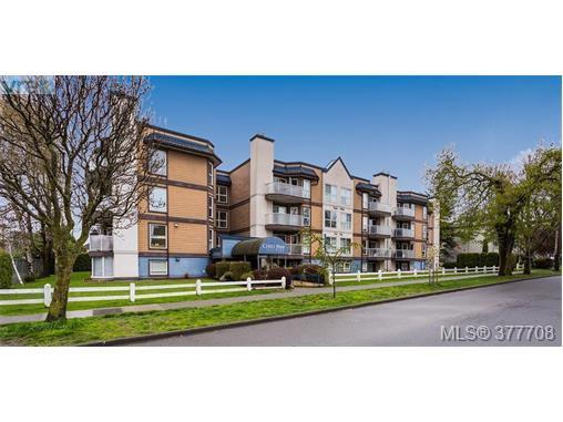 Main Photo: 110 2529 Wark St in VICTORIA: Vi Hillside Condo for sale (Victoria)  : MLS®# 758419