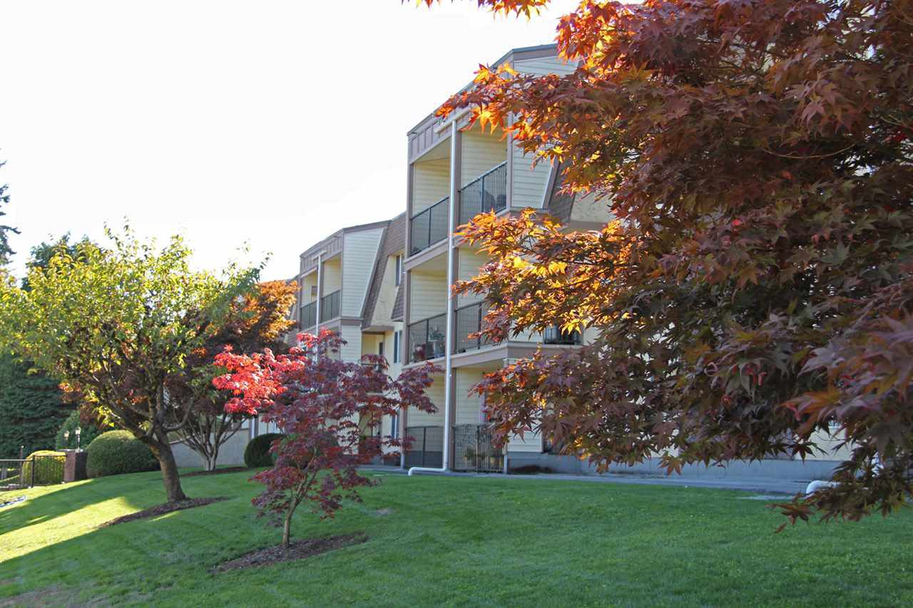 """Main Photo: 109 2821 TIMS Street in Abbotsford: Abbotsford West Condo for sale in """"Parkview Estates"""" : MLS®# R2212181"""