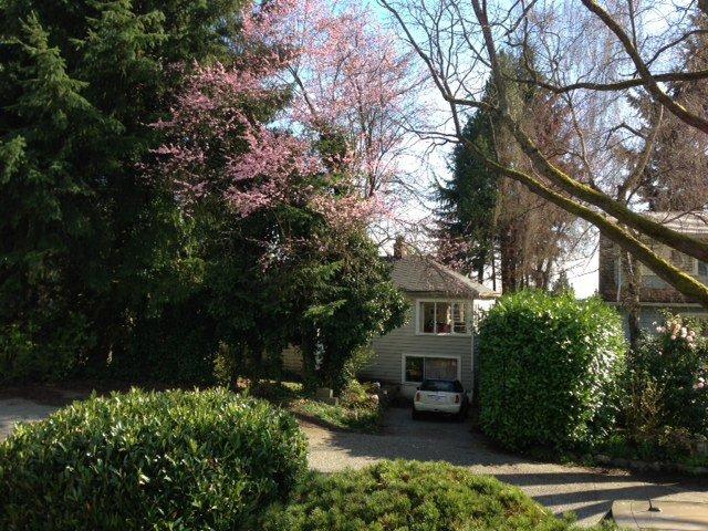 original cottage on large lot