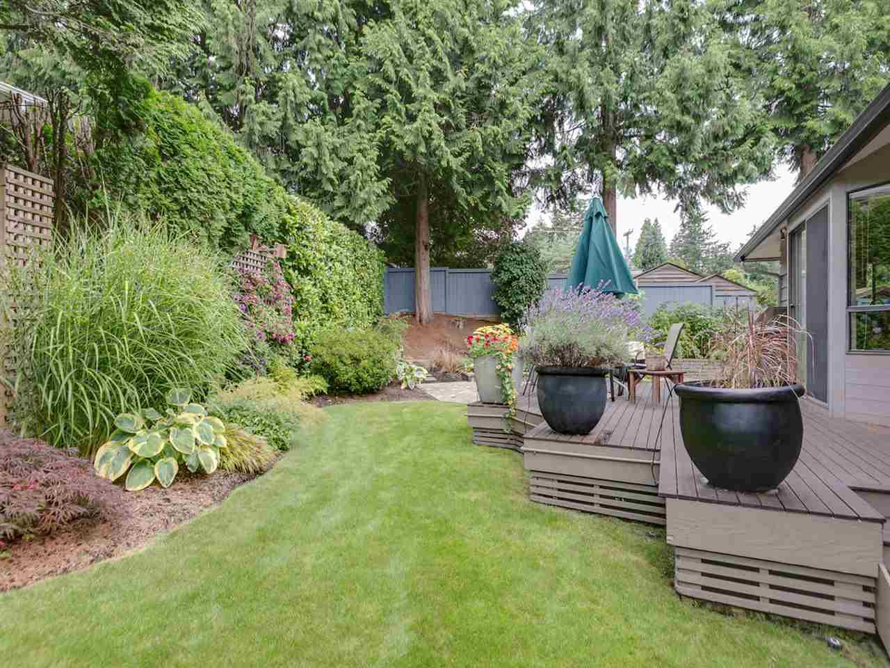 Photo 3: Photos: 1959 ALDERLYNN Drive in North Vancouver: Westlynn House for sale : MLS®# R2094199