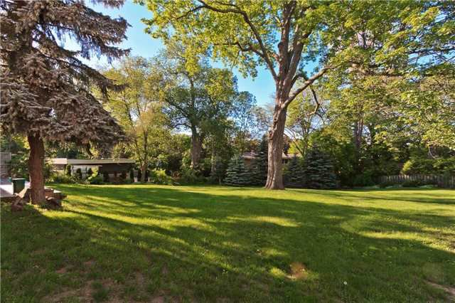 Photo 3: Photos: 1359 Willowdown Road in Oakville: Bronte East House (Bungalow) for lease : MLS®# W3835383