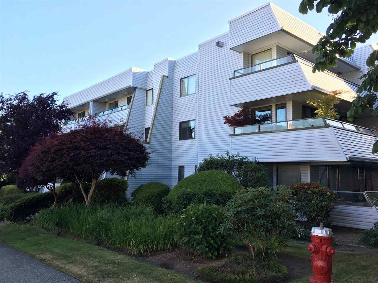 """Main Photo: 103 1341 GEORGE Street: White Rock Condo for sale in """"OCEANVIEW"""" (South Surrey White Rock)  : MLS®# R2183251"""