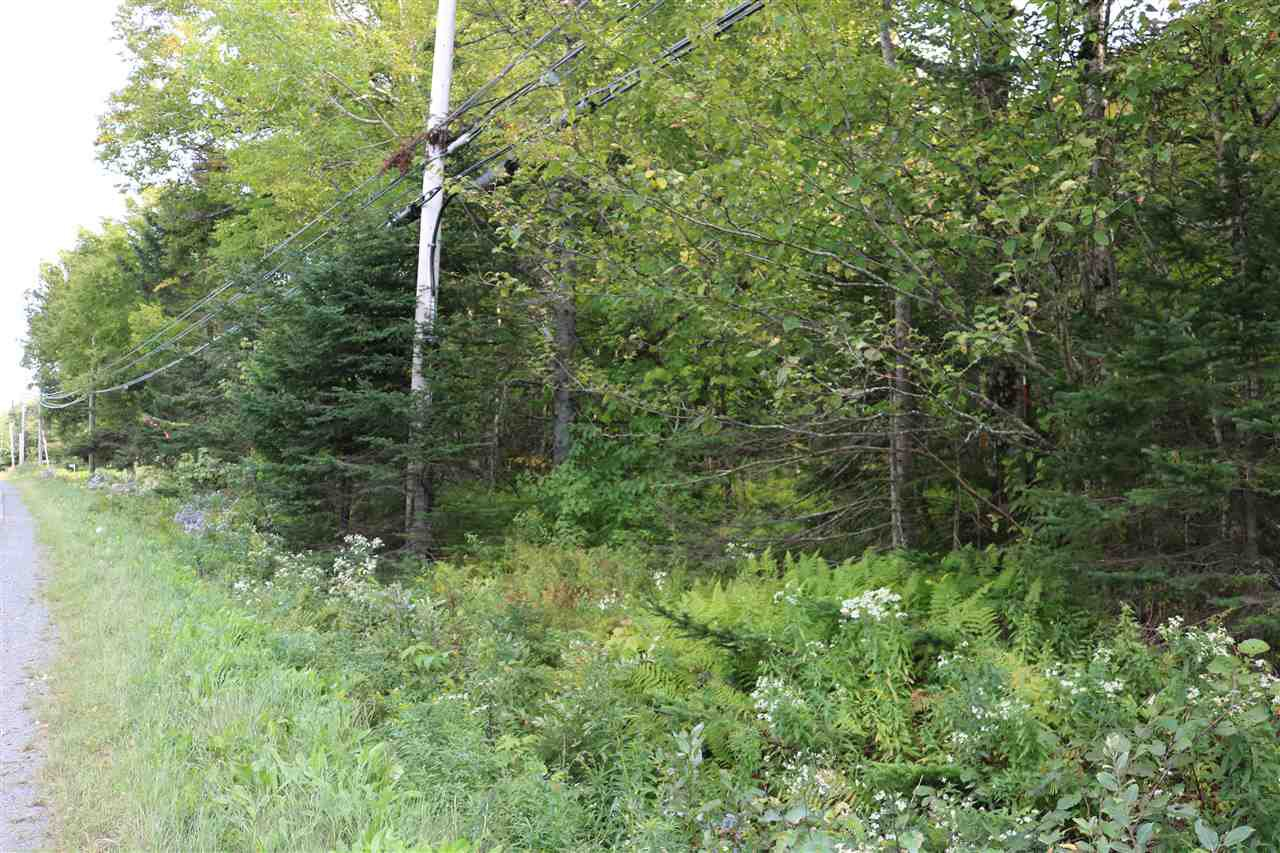 Main Photo: lot 106 Highway 1 in Mount Uniacke: 105-East Hants/Colchester West Vacant Land for sale (Halifax-Dartmouth)  : MLS®# 202019117
