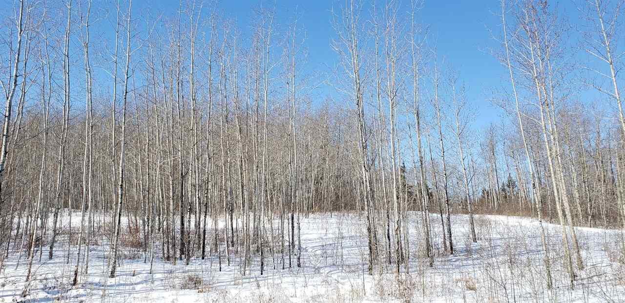 Main Photo: 61524 RR434: Rural Bonnyville M.D. Rural Land/Vacant Lot for sale : MLS®# E4147794