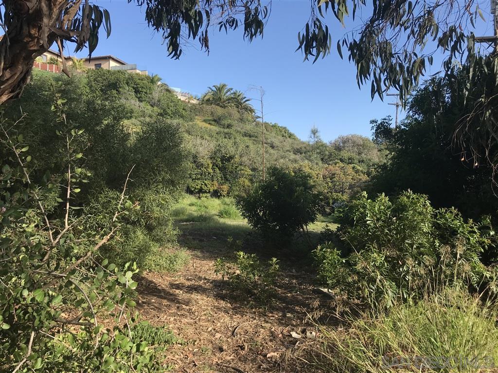 Main Photo: SAN DIEGO Property for sale: APN 357-570-30-00 in La Jolla