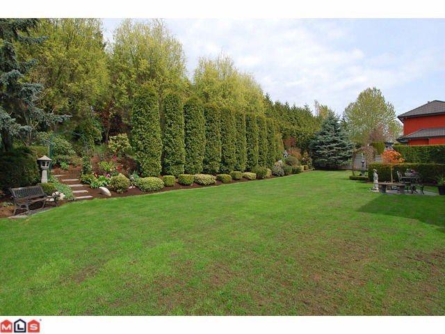 "Photo 10: Photos: 12411 57B Avenue in Surrey: Panorama Ridge House for sale in ""PANORAMA RIDGE"" : MLS®# F1119969"