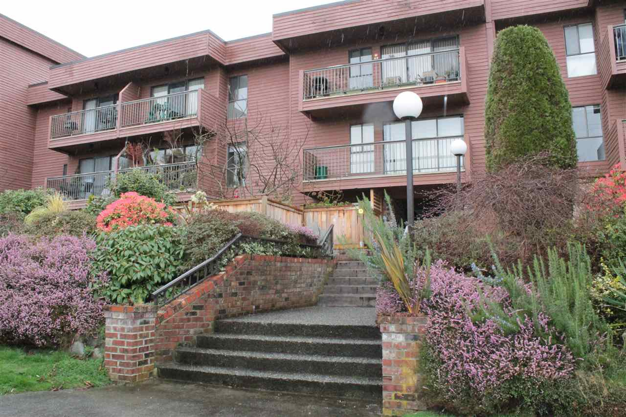 "Main Photo: 206 215 MOWAT Street in New Westminster: Uptown NW Condo for sale in ""CEDARHILL MANOR"" : MLS®# R2131061"