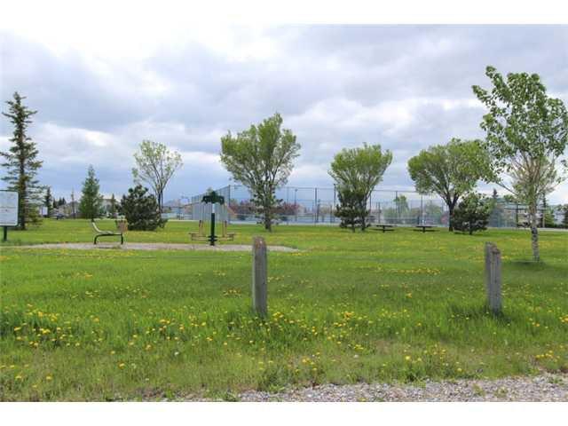 Photo 20: Photos: 31 APPLERIDGE Green SE in CALGARY: Applewood Residential Detached Single Family for sale (Calgary)  : MLS®# C3620379