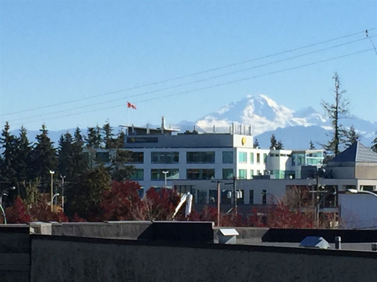 Photo 18: Photos: 305 31955 OLD YALE Road in Abbotsford: Abbotsford West Condo for sale : MLS®# R2311478