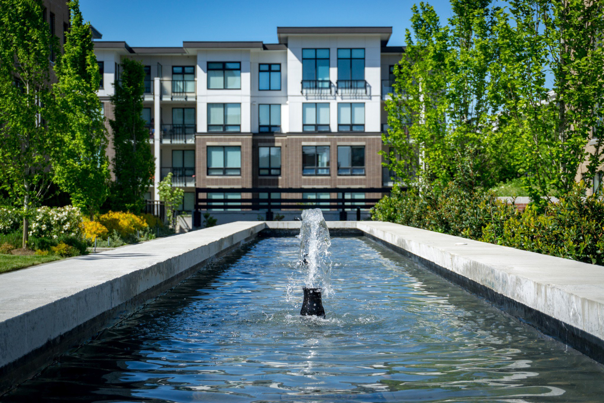 """Photo 42: Photos: 303 9311 ALEXANDRA Road in Richmond: West Cambie Condo for sale in """"ALEXANDRA COURT"""" : MLS®# R2347629"""