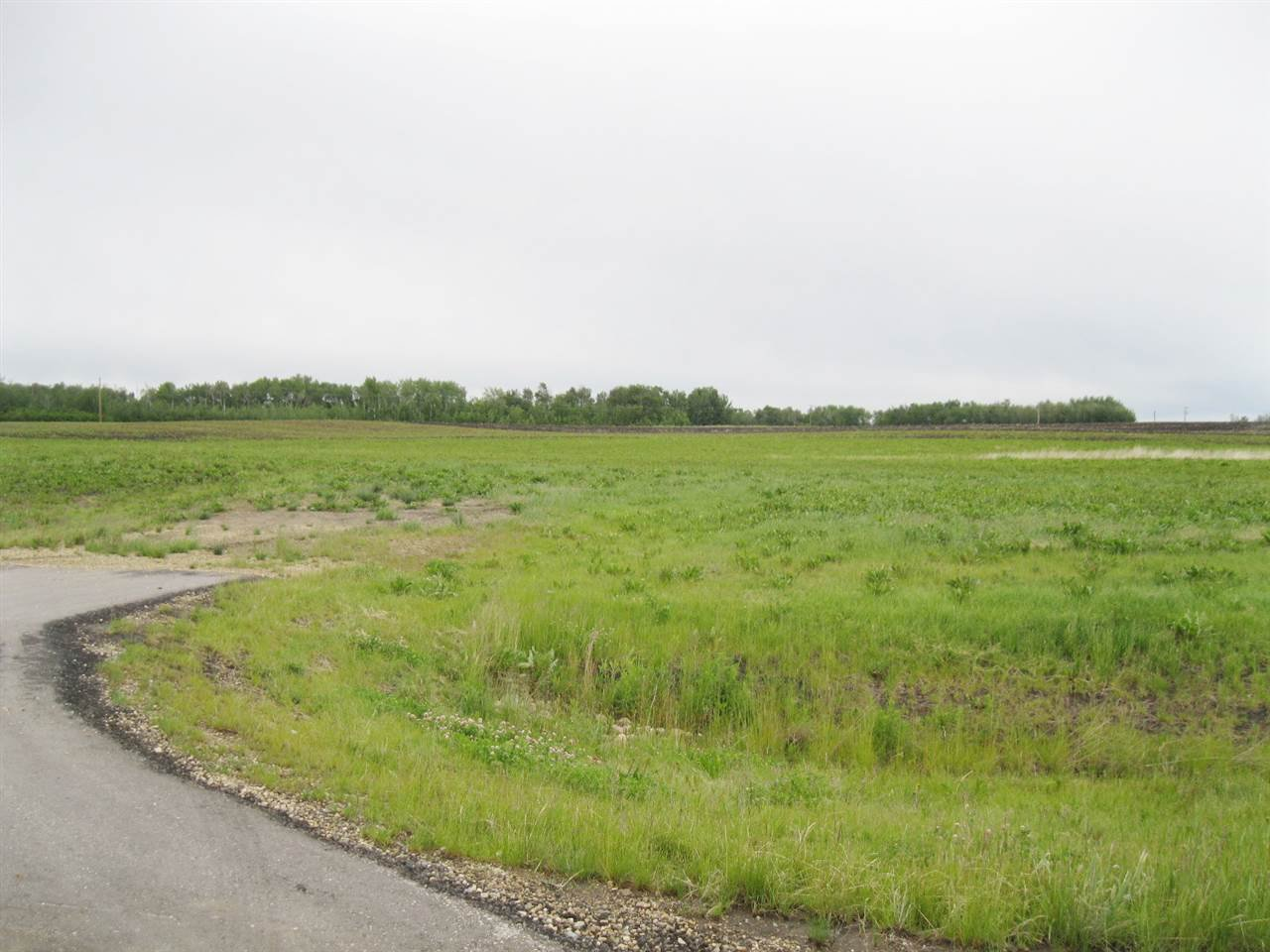 Main Photo: 12 52329 RGE RD 13: Rural Parkland County Rural Land/Vacant Lot for sale : MLS®# E4192971