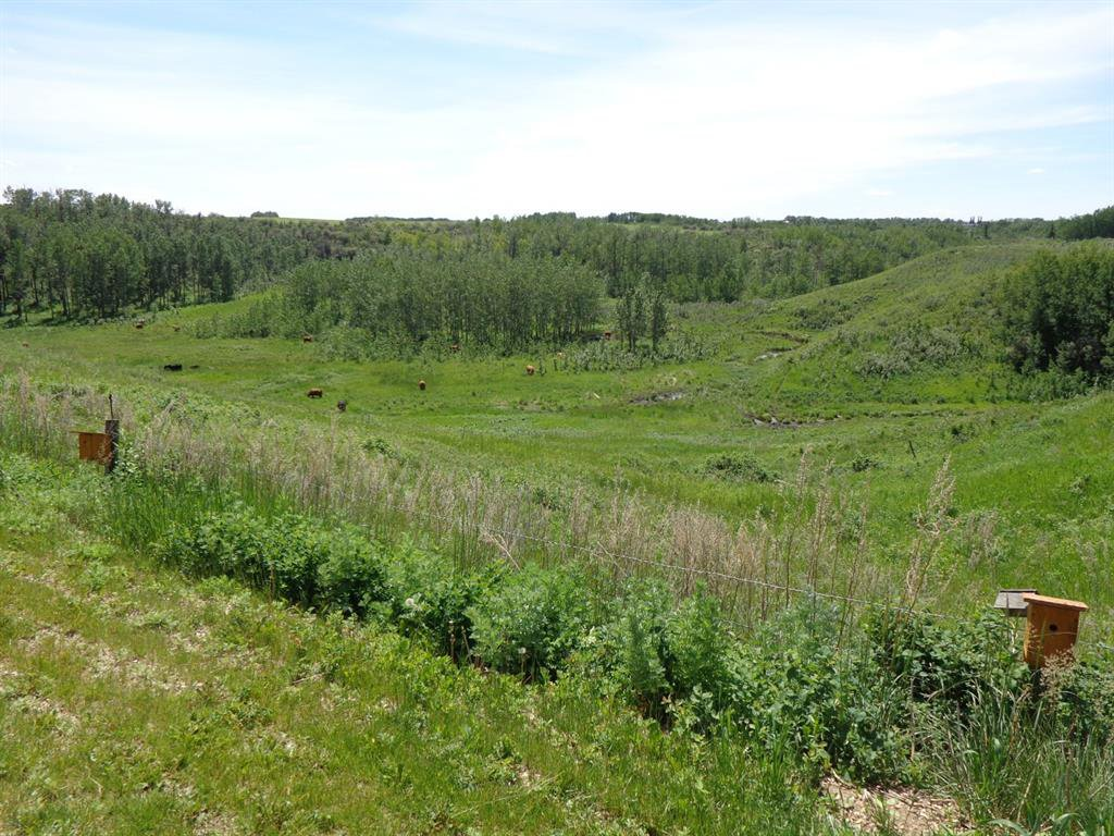Photo 43: Photos: 93 Deer Coulee Drive in Didsbury: NONE Residential for sale : MLS®# A1005988