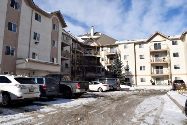Main Photo: 215 11218 80 Street in Edmonton: Zone 09 Condo for sale : MLS®# E4223856