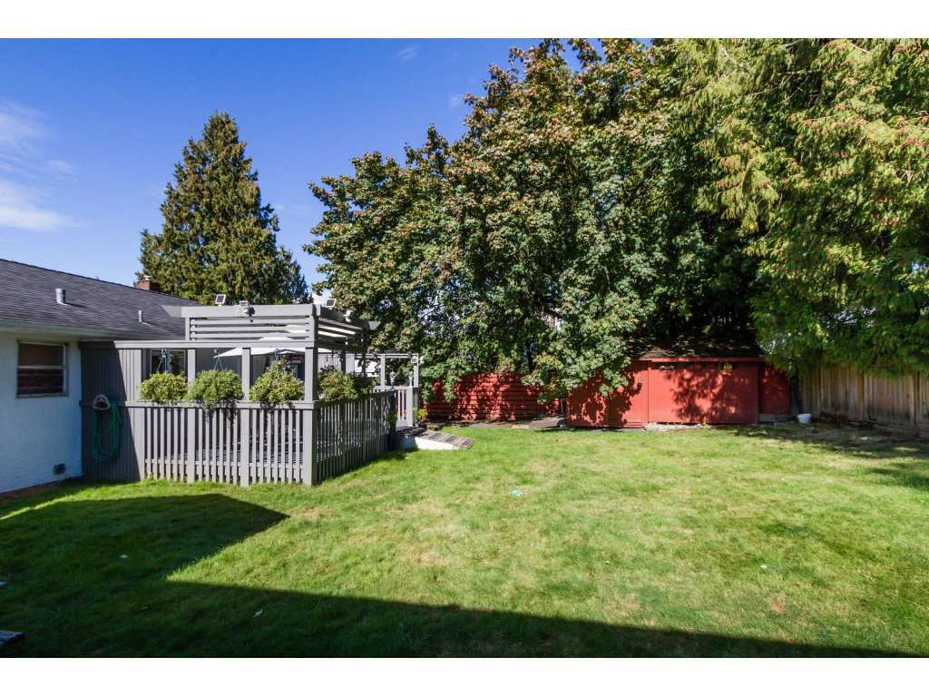 Photo 15: Photos: 11266 LOUGHREN Drive in Surrey: Bolivar Heights House for sale (North Surrey)  : MLS®# R2111434