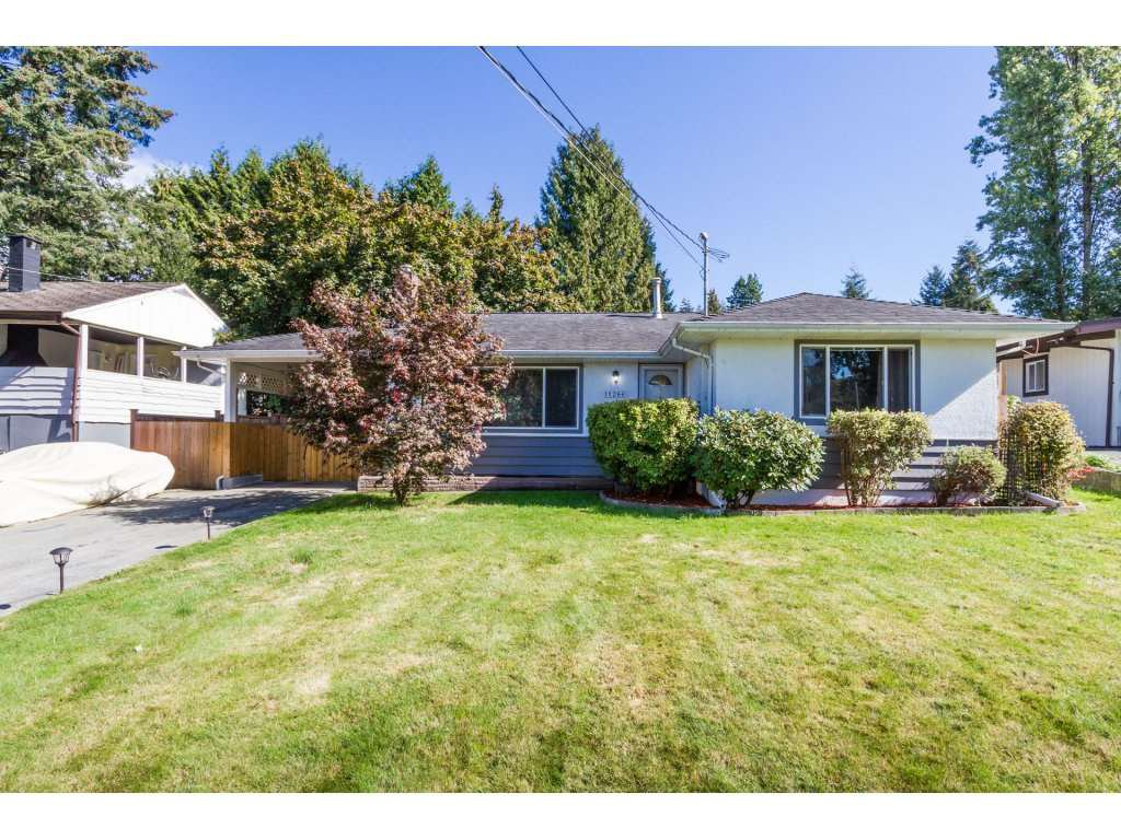 Main Photo: 11266 LOUGHREN Drive in Surrey: Bolivar Heights House for sale (North Surrey)  : MLS®# R2111434