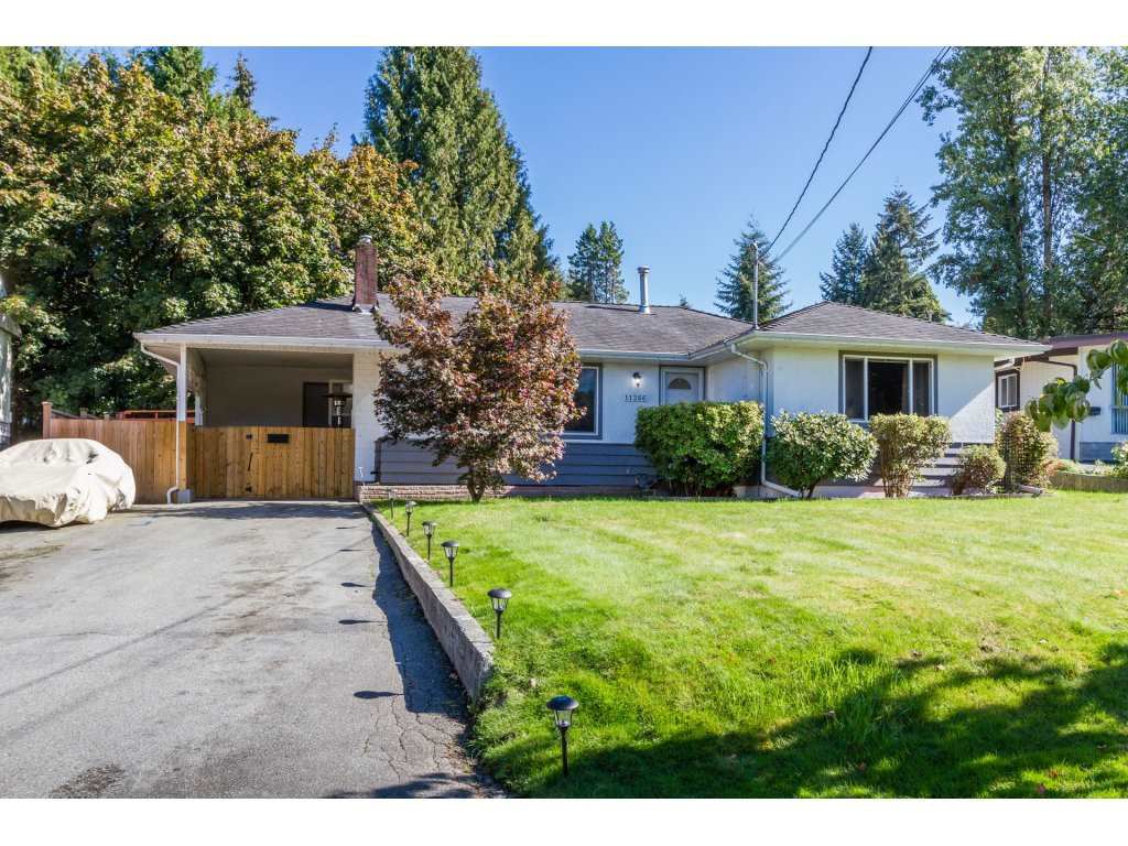Photo 19: Photos: 11266 LOUGHREN Drive in Surrey: Bolivar Heights House for sale (North Surrey)  : MLS®# R2111434