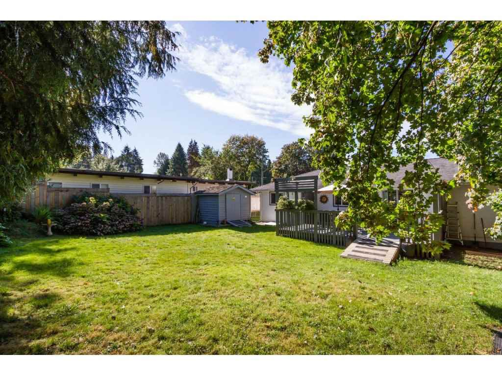 Photo 18: Photos: 11266 LOUGHREN Drive in Surrey: Bolivar Heights House for sale (North Surrey)  : MLS®# R2111434