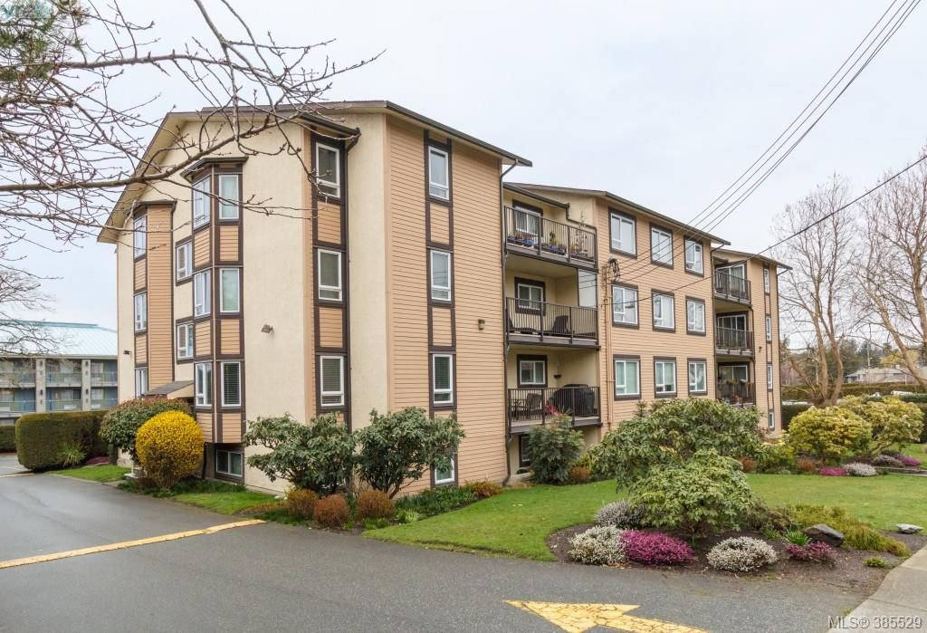Main Photo: 104 3258 Alder Street in VICTORIA: SE Quadra Condo Apartment for sale (Saanich East)  : MLS®# 385529