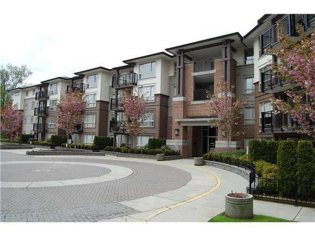 Main Photo: 103 11665 HANEY BYPASS in Maple Ridge: West Central Condo for sale : MLS®# R2226779
