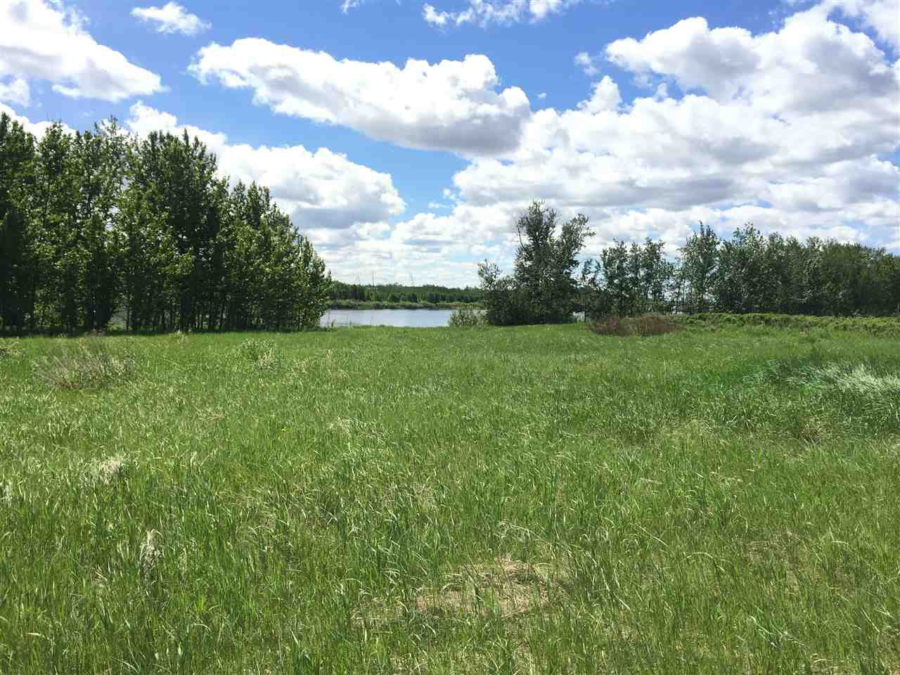 Main Photo: HWY 2 Chornohora Road: Rural Westlock County Rural Land/Vacant Lot for sale : MLS®# E4101744