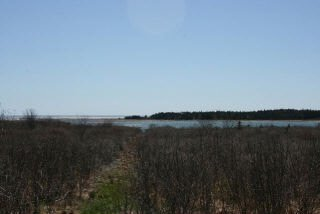 Main Photo: West Sable Road in Little Harbour: 407-Shelburne County Vacant Land for sale (South Shore)  : MLS®# 201911281