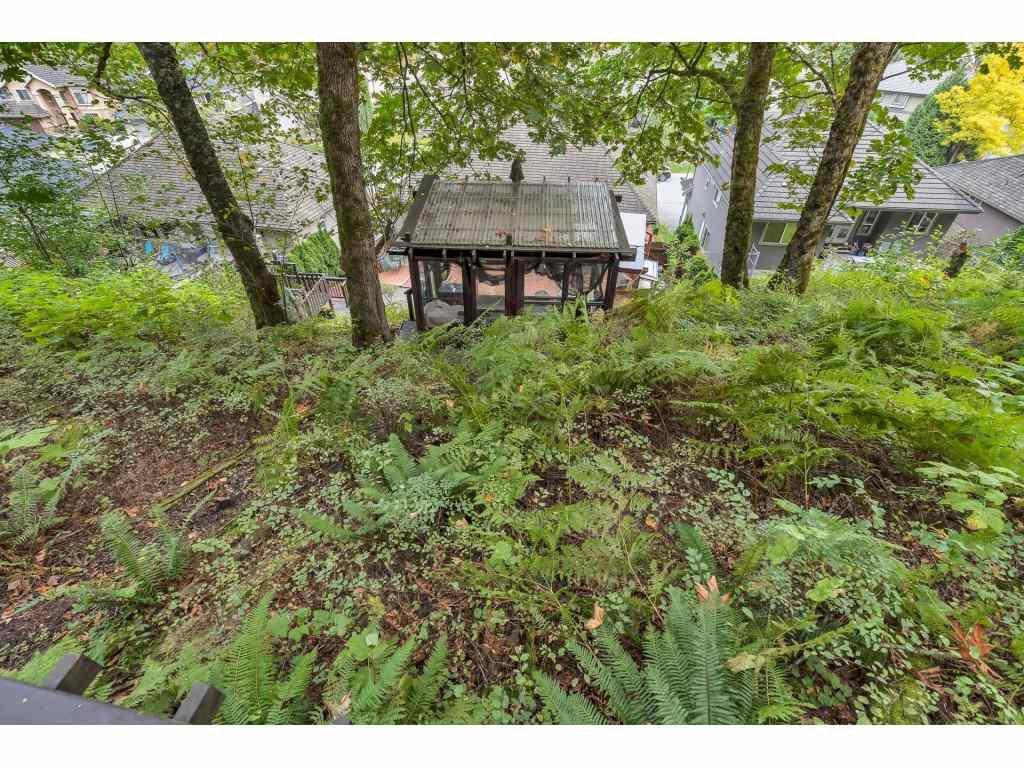 Photo 39: Photos: 35734 REGAL Parkway in Abbotsford: Abbotsford East House for sale : MLS®# R2504492