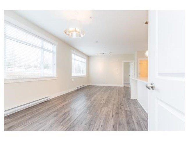 Photo 5: Photos: 311-22327 River Rd in Maple Ridge: Condo for rent