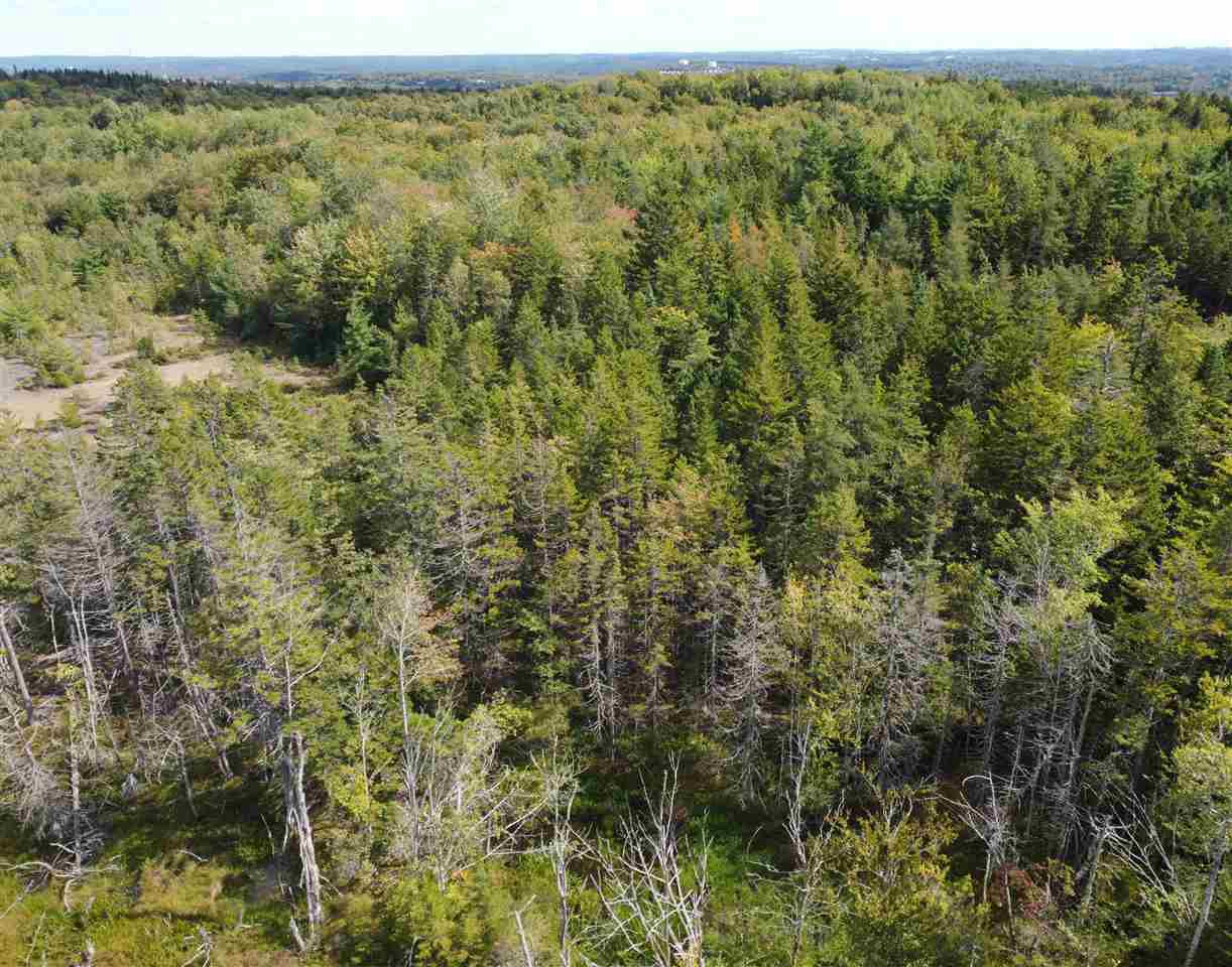 Main Photo: 225 Lively Road in Middle Sackville: 26-Beaverbank, Upper Sackville Vacant Land for sale (Halifax-Dartmouth)  : MLS®# 202018440