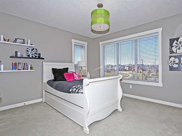 Photo 14: Photos: 114 CHAPALA Point(e) SE in Calgary: Chaparral House for sale : MLS®# C3652360