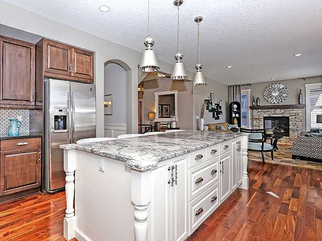 Photo 3: Photos: 114 CHAPALA Point(e) SE in Calgary: Chaparral House for sale : MLS®# C3652360