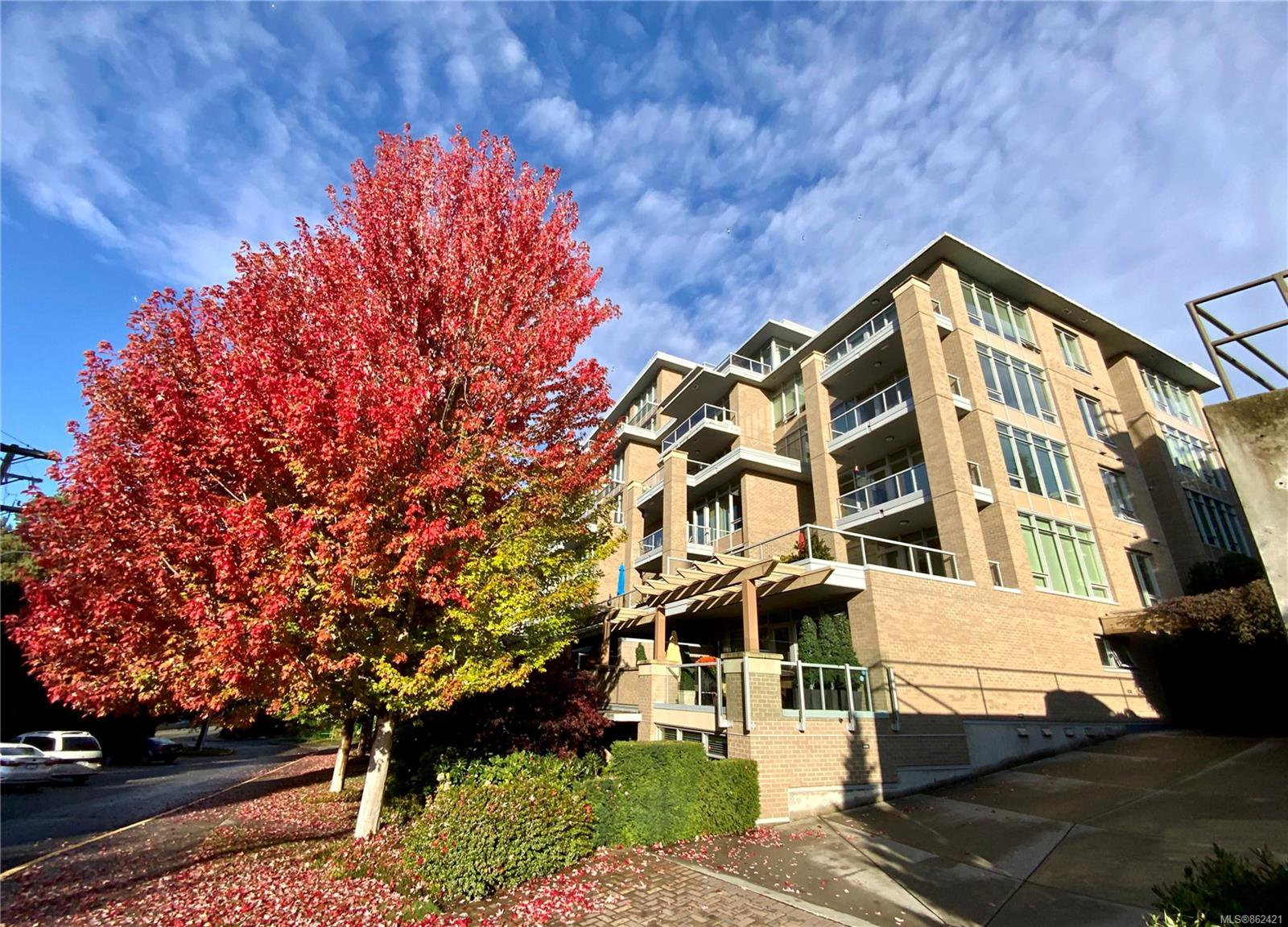 Main Photo: 1 828 Rupert Terr in : Vi Downtown Row/Townhouse for sale (Victoria)  : MLS®# 862421