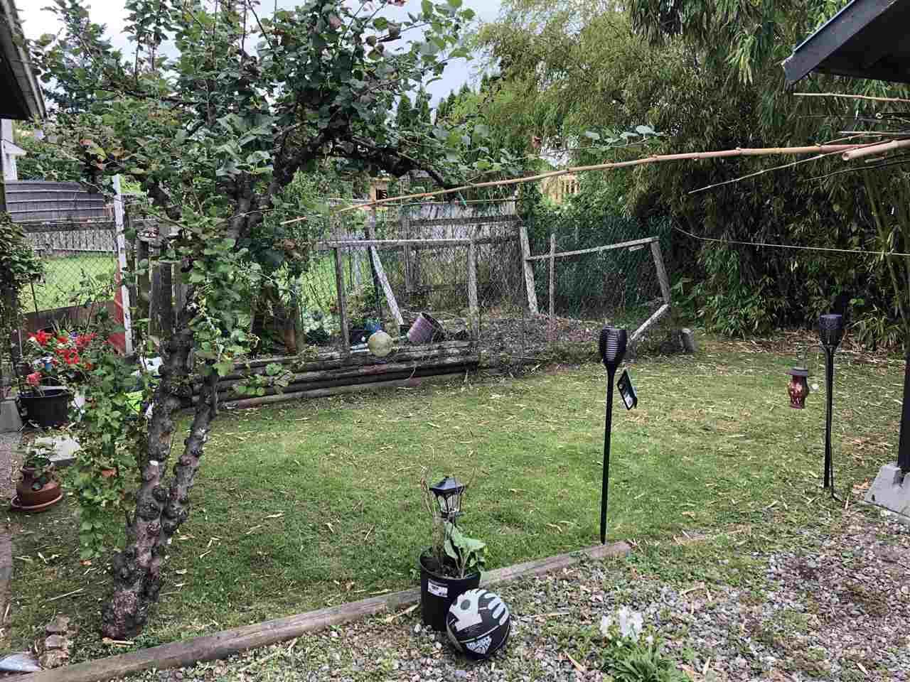 """Photo 14: Photos: 12767 115A Avenue in Surrey: Bridgeview House for sale in """"Bridgeview"""" (North Surrey)  : MLS®# R2386694"""