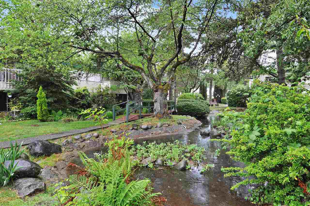 "Photo 19: Photos: 720 WESTVIEW Crescent in North Vancouver: Central Lonsdale Condo for sale in ""Cypress Gardens"" : MLS®# R2370300"