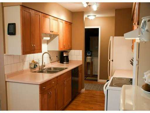 Main Photo: 327 22661 LOUGHEED Highway in Maple Ridge: East Central Condo for sale : MLS®# V980911