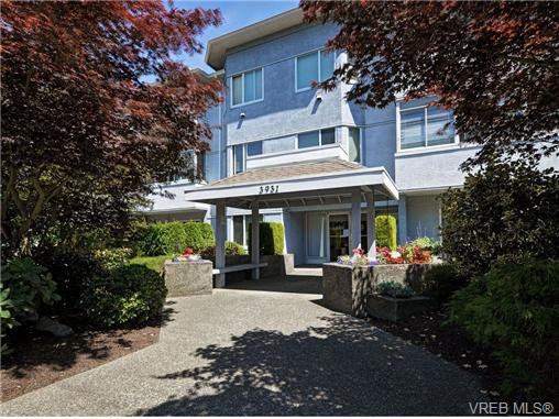 Main Photo: 306 3931 Shelbourne Street in VICTORIA: SE Mt Tolmie Condo Apartment for sale (Saanich East)  : MLS®# 353996