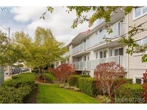 Main Photo: 305 3180 Albina Street in VICTORIA: SW Tillicum Condo Apartment for sale (Saanich West)  : MLS®# 377366