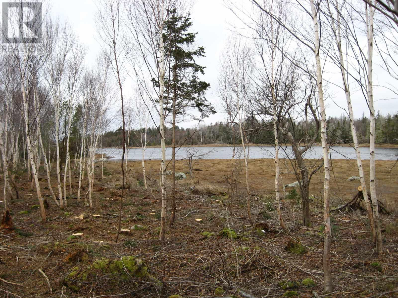 Main Photo: Lot East Port Loop Road in East Port Medway: Vacant Land for sale : MLS®# 202000583