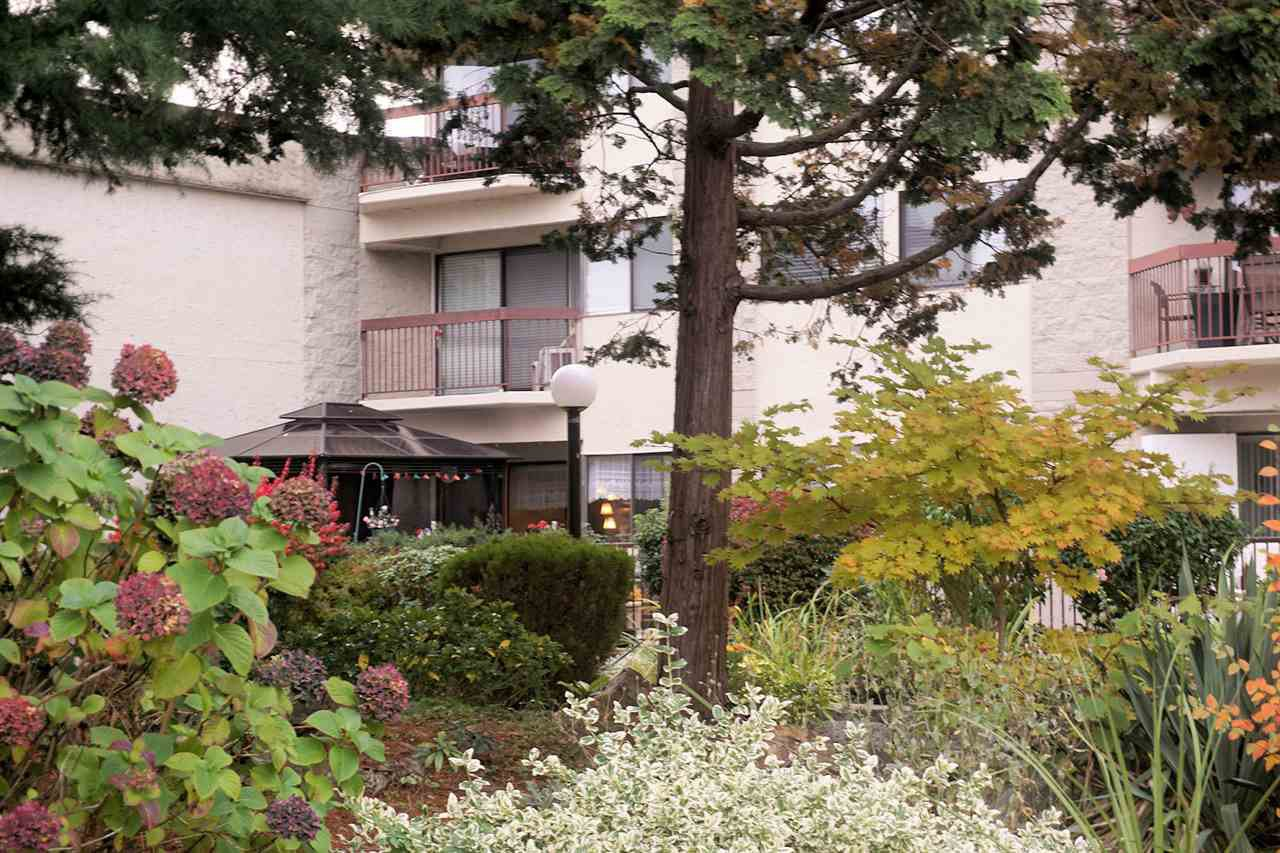 "Photo 11: Photos: 207 31955 OLD YALE Road in Abbotsford: Abbotsford West Condo for sale in ""EVERGREEN VILLAGE"" : MLS®# R2217051"