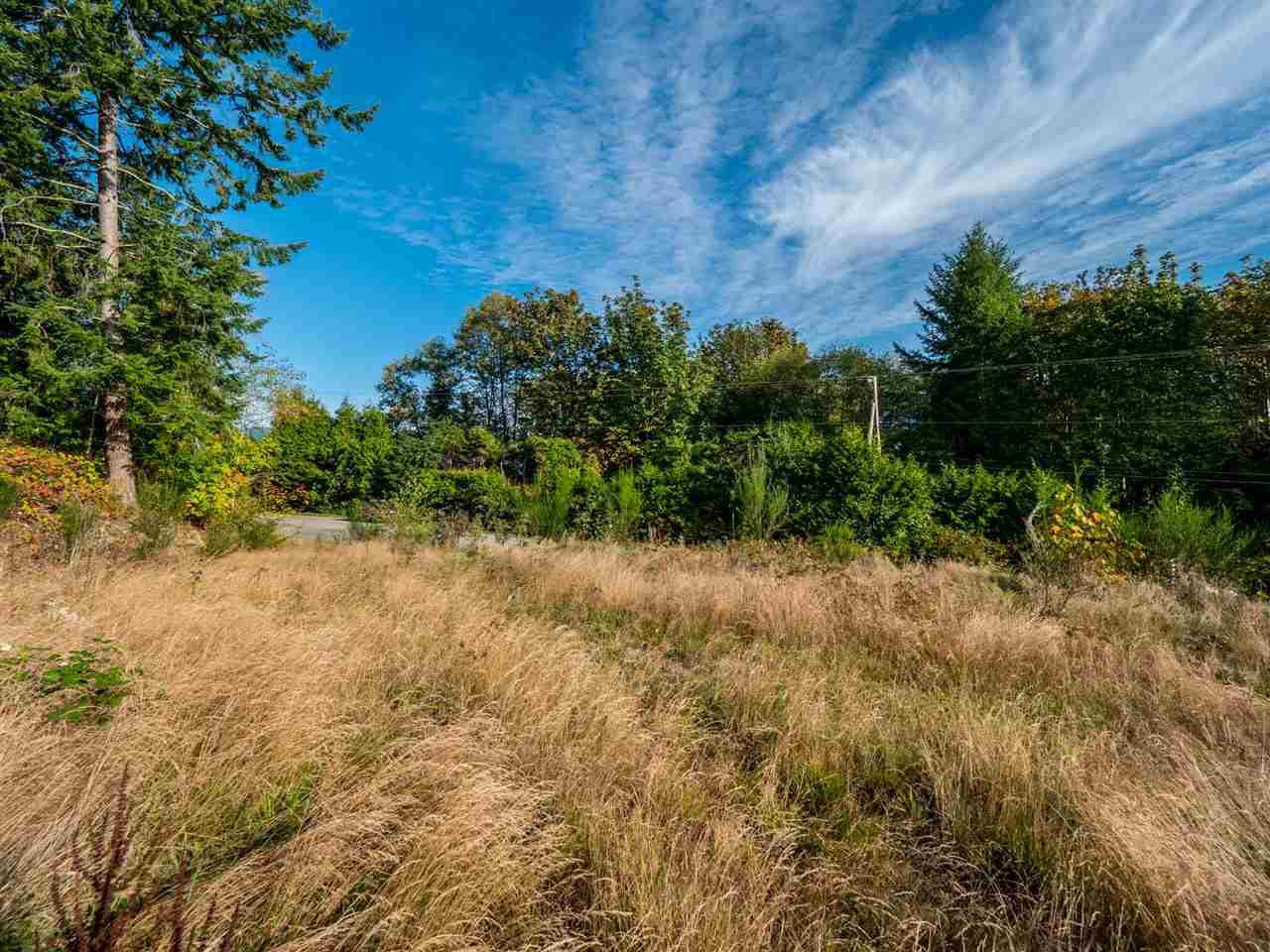 Main Photo: LOT Z 6333 N GALE AVENUE in Sechelt: Sechelt District Land for sale (Sunshine Coast)  : MLS®# R2409681