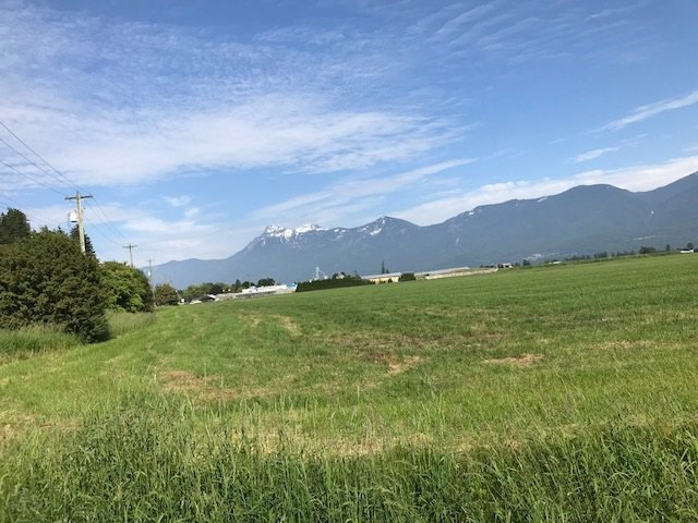 Main Photo: 47165 YALE Road in Chilliwack: Chilliwack E Young-Yale Land for sale : MLS®# R2459551