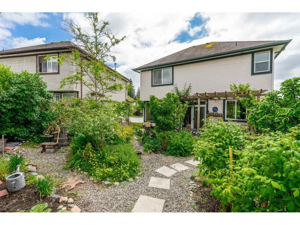 "Photo 20: Photos: 23801 KANAKA Way in Maple Ridge: Cottonwood MR House for sale in ""Creekside Park"" : MLS®# R2371623"