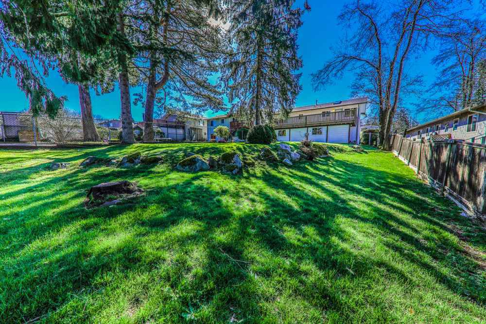 Photo 19: Photos: 14067 113A Avenue in Surrey: Bolivar Heights House for sale (North Surrey)  : MLS®# R2387491
