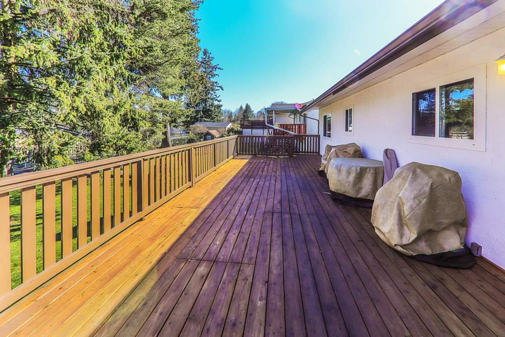 Photo 16: Photos: 14067 113A Avenue in Surrey: Bolivar Heights House for sale (North Surrey)  : MLS®# R2387491