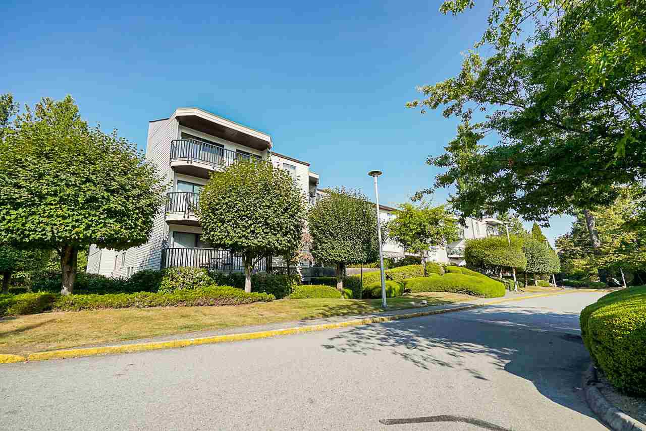 """Main Photo: 302 9952 149 Street in Surrey: Guildford Condo for sale in """"TALL TIMBERS"""" (North Surrey)  : MLS®# R2492246"""