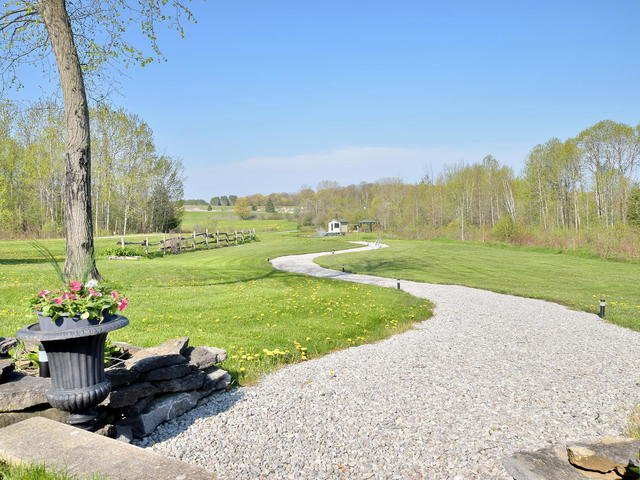 Photo 17: Photos: 2400 County Road 46: Kawartha Lakes Freehold for sale : MLS®# X3805923