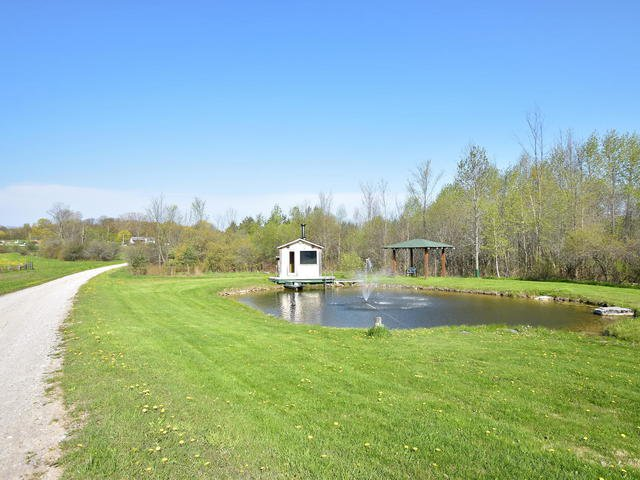 Photo 2: Photos: 2400 County Road 46: Kawartha Lakes Freehold for sale : MLS®# X3805923