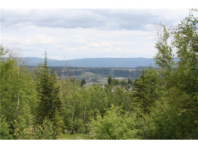 Main Photo: 6372 LALONDE Road in Prince George: St. Lawrence Heights Land for sale (PG City South (Zone 74))  : MLS®# N237222
