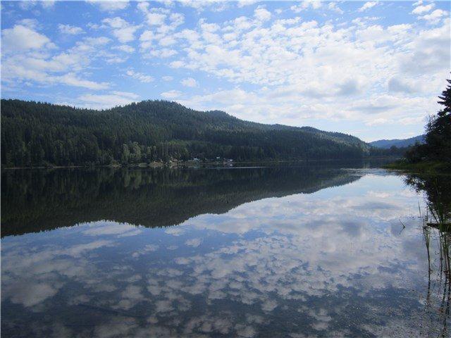 Main Photo: BLK B LITTLE LAKE Road in Williams Lake: Horsefly Land for sale (Williams Lake (Zone 27))  : MLS®# N247072