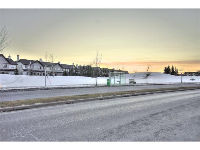 Photo 31: Photos: 824 EVERRIDGE Drive SW in Calgary: Evergreen House for sale : MLS®# C4048320