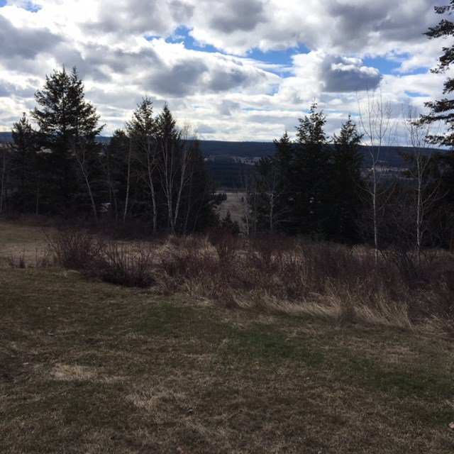 Photo 2: Photos: 8072 S 97 Highway in Quesnel: Quesnel Rural - South House for sale (Quesnel (Zone 28))  : MLS®# R2353450